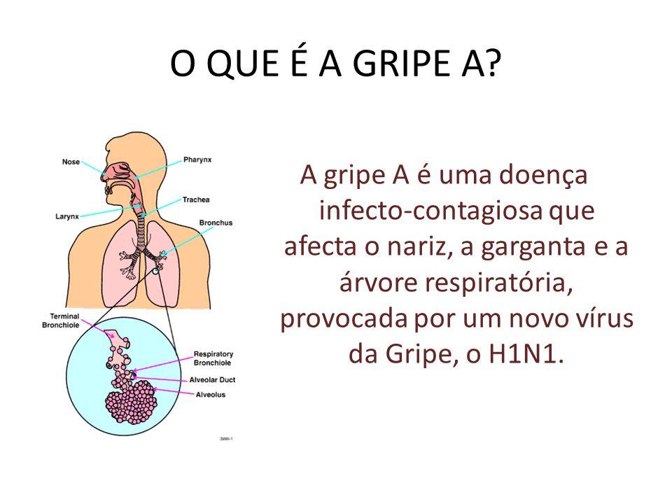 Vírus da Gripe A (H1N1)