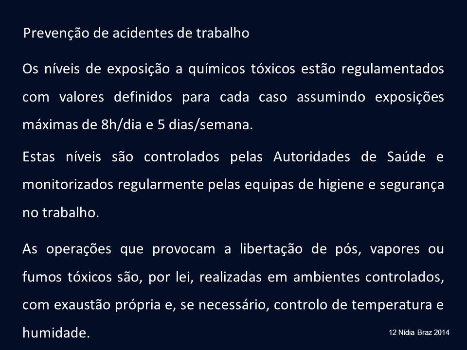 12 Nídia Braz 2014 Os níveis de exposição a químicos tóxicos estão regulamentados com valores definidos para cada caso assumindo exposições máximas de
