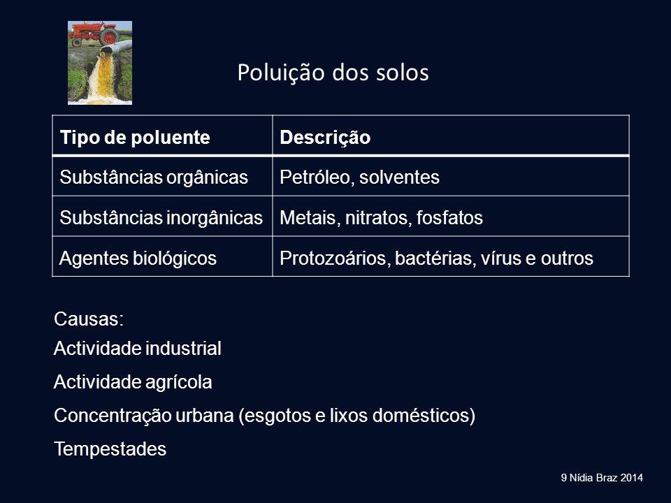 9 Nídia Braz 2014 Tipo de poluenteDescrição Substâncias orgânicasPetróleo, solventes Substâncias inorgânicasMetais, nitratos, fosfatos Agentes biológi