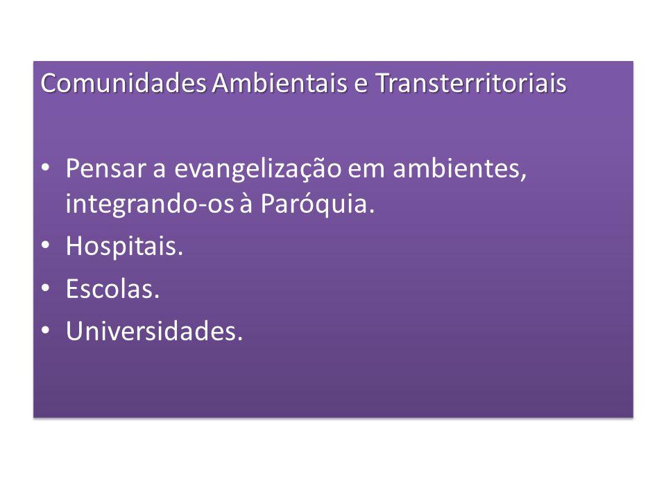 Comunidades Ambientais e Transterritoriais Pensar a evangelização em ambientes, integrando-os à Paróquia. Hospitais. Escolas. Universidades. Comunidad