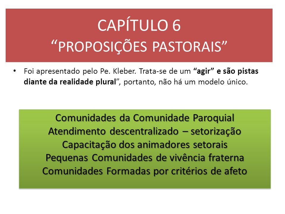 """CAPÍTULO 6 """" PROPOSIÇÕES PASTORAIS"""" Foi apresentado pelo Pe. Kleber. Trata-se de um """"agir"""" e são pistas diante da realidade plural"""", portanto, não há"""