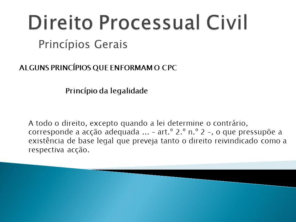 Princípios Gerais ALGUNS PRINCÍPIOS QUE ENFORMAM O CPC Princípio da legalidade A todo o direito, excepto quando a lei determine o contrário, correspon
