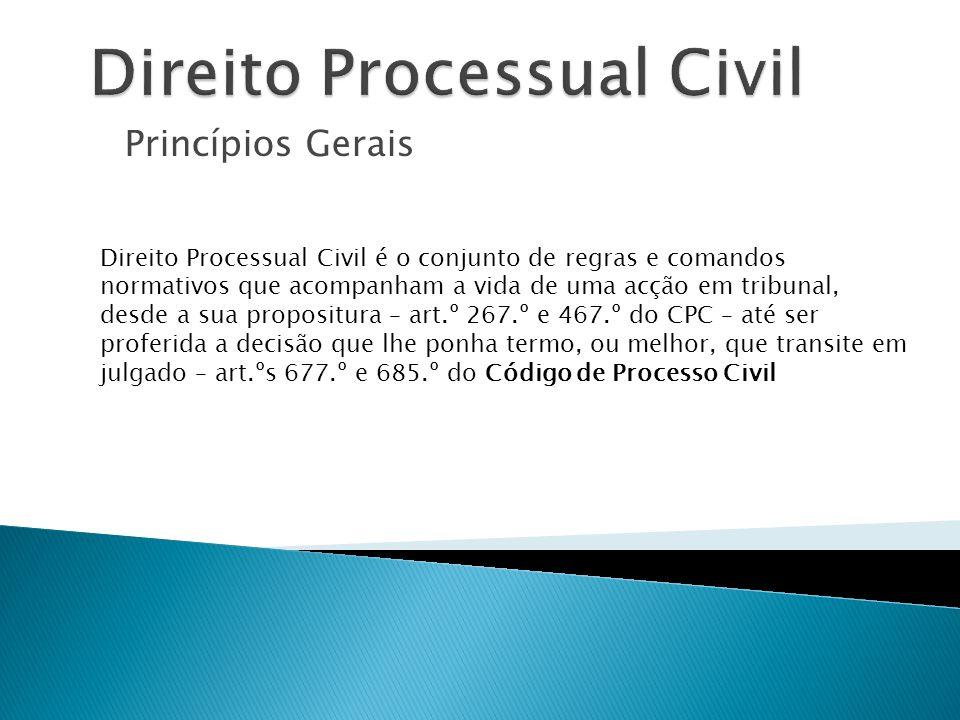 Princípios Gerais Direito Processual Civil é o conjunto de regras e comandos normativos que acompanham a vida de uma acção em tribunal, desde a sua pr