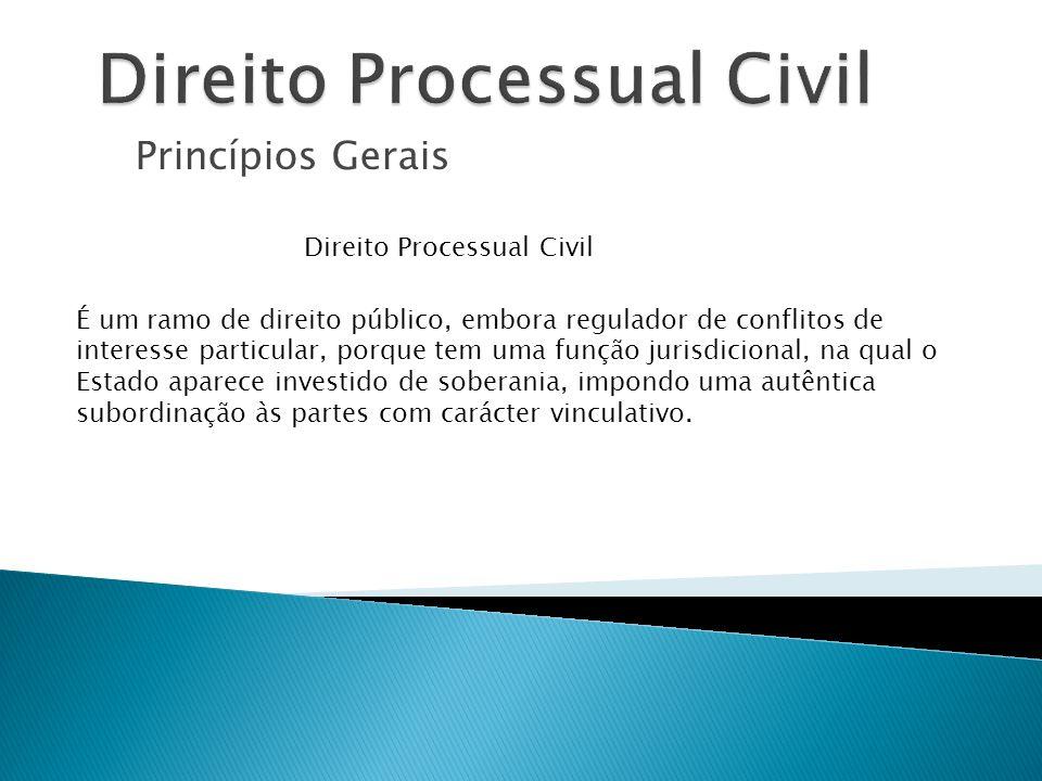 Princípios Gerais ALGUNS PRINCÍPIOS QUE ENFORMAM O CPC Princípio da preclusão Significa que, ultrapassado certo momento ou certa fase processual, esgota-se o direito facultado às partes destinado à prática de actos processuais – art.º 145.º, n.º 3.
