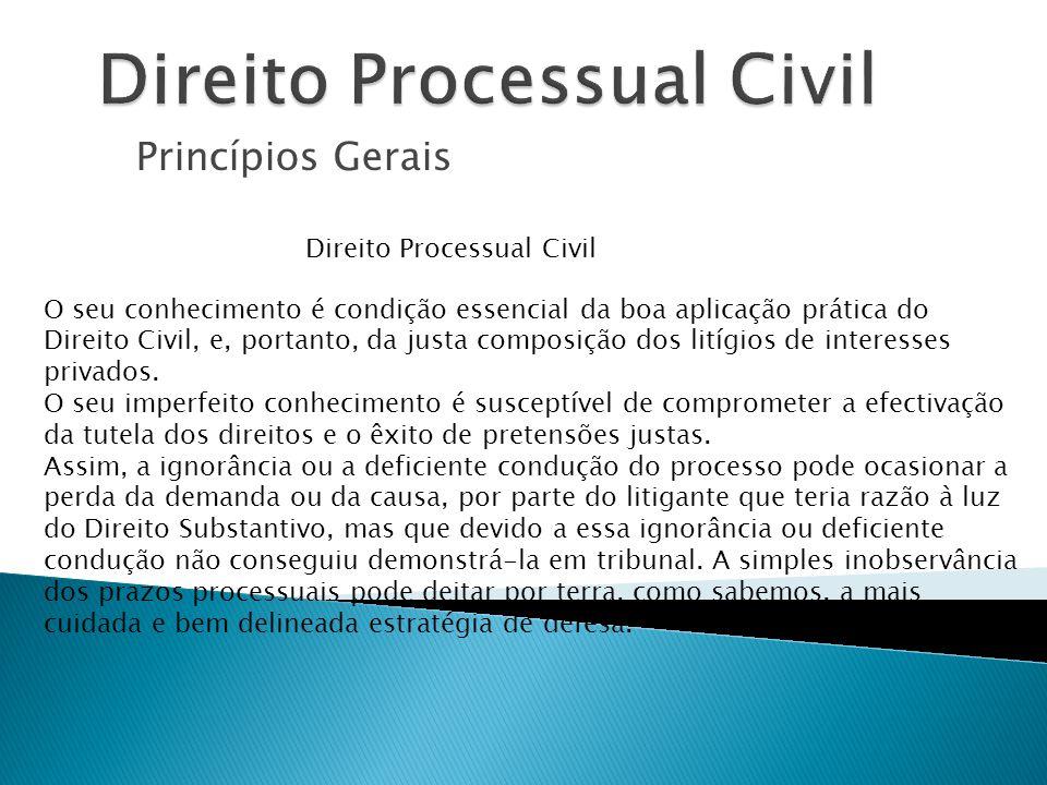 Princípios Gerais Direito Processual Civil O seu conhecimento é condição essencial da boa aplicação prática do Direito Civil, e, portanto, da justa co