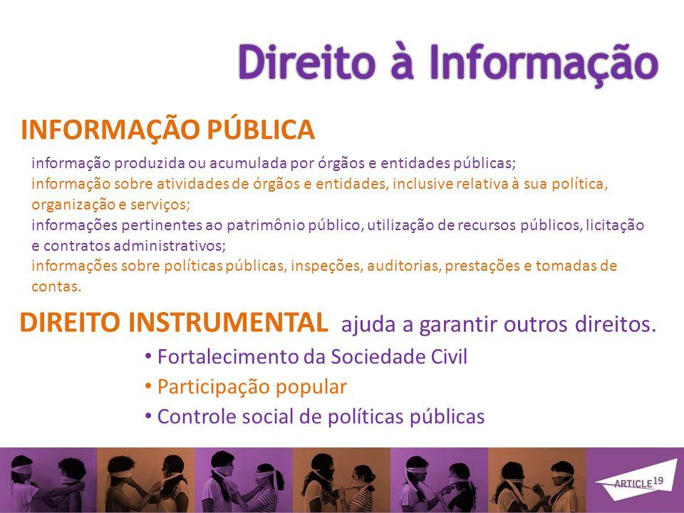 DIREITO INSTRUMENTAL ajuda a garantir outros direitos.