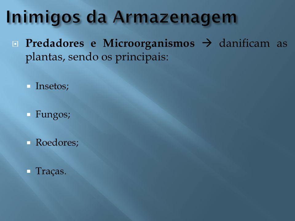  Predadores e Microorganismos  danificam as plantas, sendo os principais:  Insetos;  Fungos;  Roedores;  Traças.