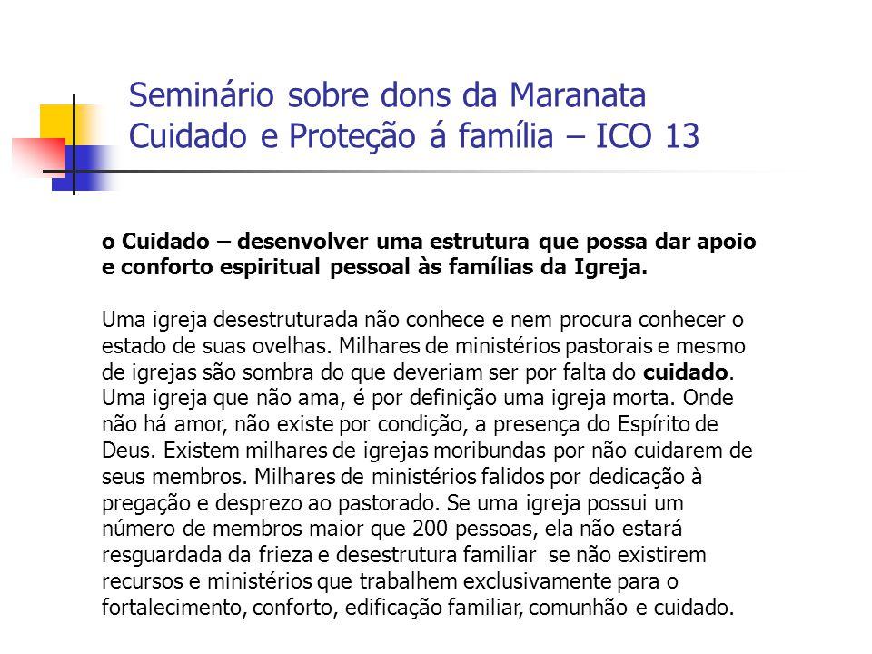 Seminário sobre dons da Maranata Cuidado e Proteção á família – ICO 13 o Cuidado – desenvolver uma estrutura que possa dar apoio e conforto espiritual