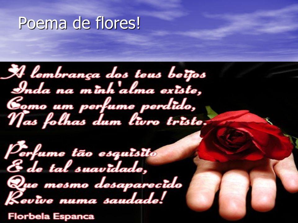 Poema de flores!