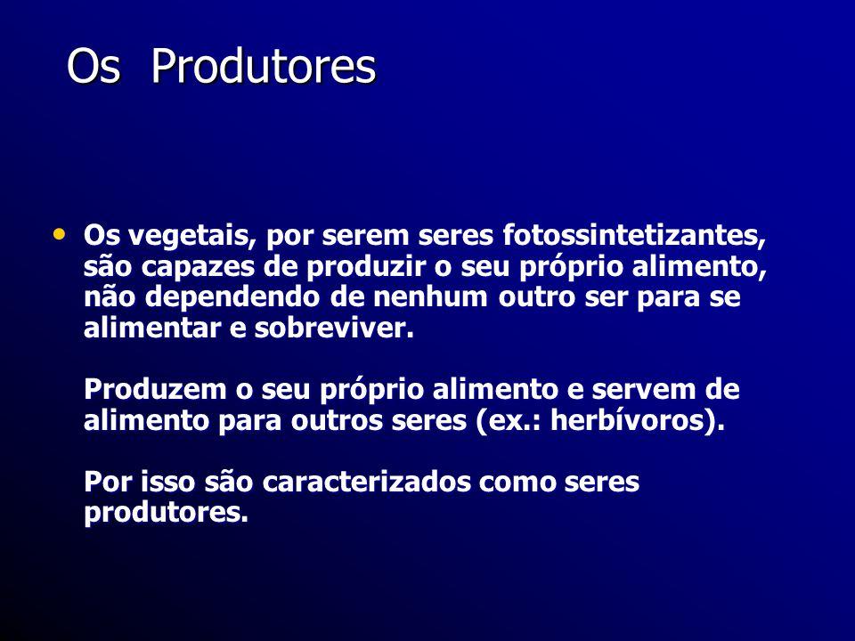 Os Produtores Os Produtores Os vegetais, por serem seres fotossintetizantes, são capazes de produzir o seu próprio alimento, não dependendo de nenhum