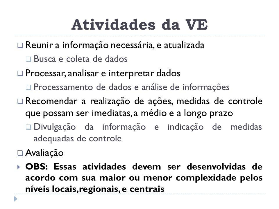 Atividades da VE  Reunir a informação necessária, e atualizada  Busca e coleta de dados  Processar, analisar e interpretar dados  Processamento de