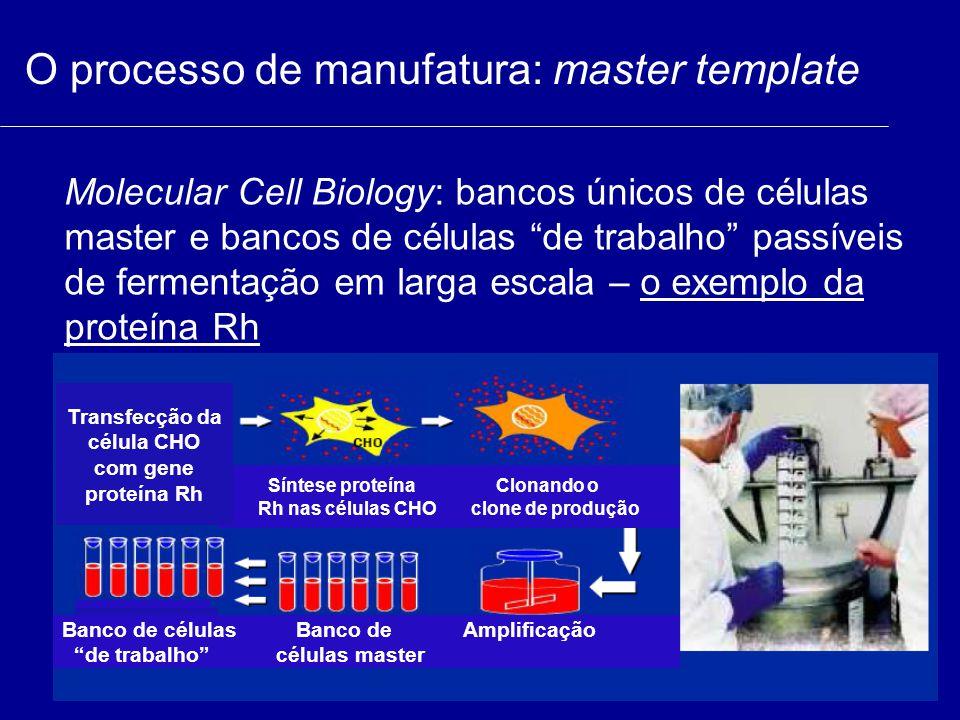 """O processo de manufatura: master template Molecular Cell Biology: bancos únicos de células master e bancos de células """"de trabalho"""" passíveis de ferme"""
