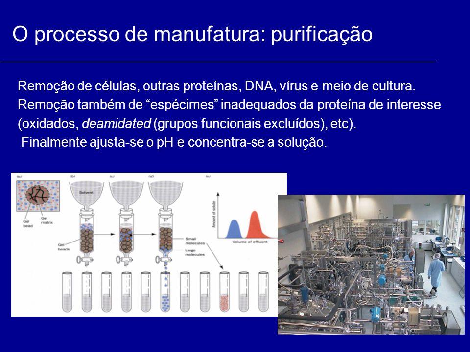 """O processo de manufatura: purificação Remoção de células, outras proteínas, DNA, vírus e meio de cultura. Remoção também de """"espécimes"""" inadequados da"""