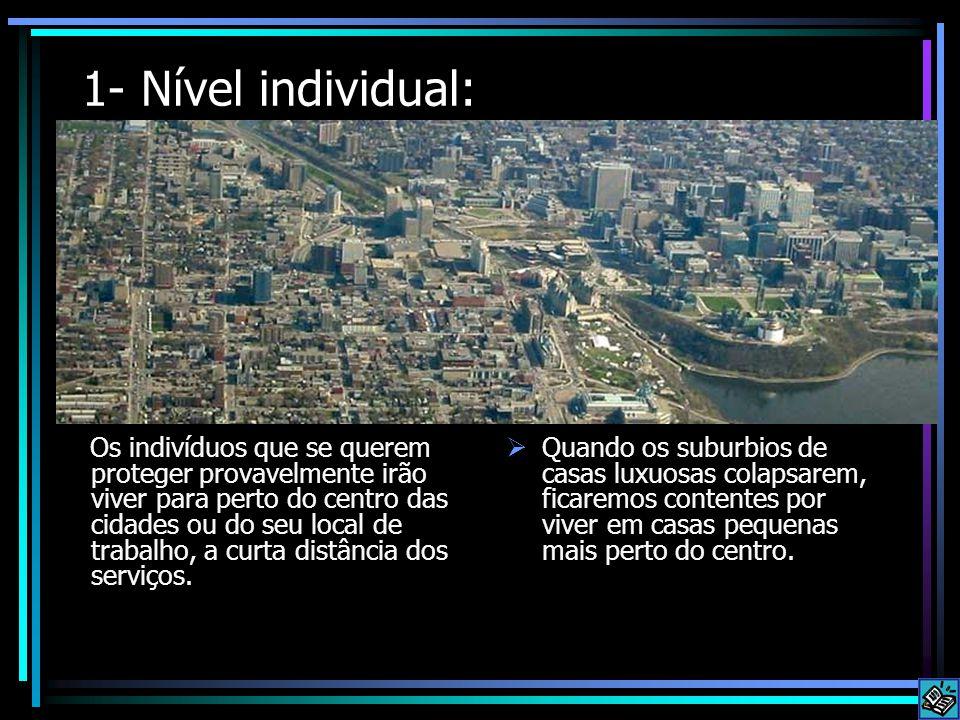 1- Nível individual: Os indivíduos que se querem proteger provavelmente irão viver para perto do centro das cidades ou do seu local de trabalho, a curta distância dos serviços.