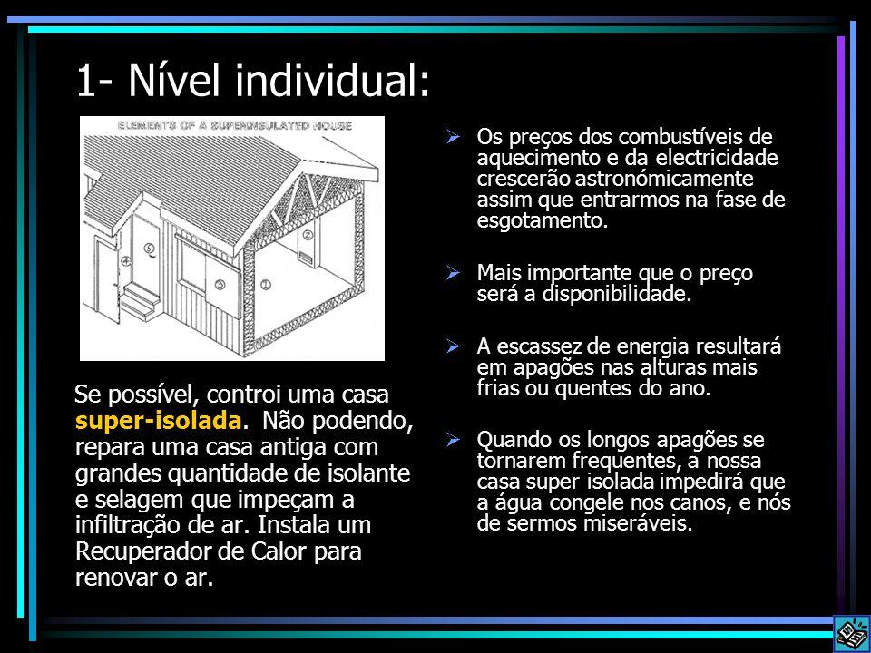 1- Nível individual: Se possível, controi uma casa super-isolada. Não podendo, repara uma casa antiga com grandes quantidade de isolante e selagem que
