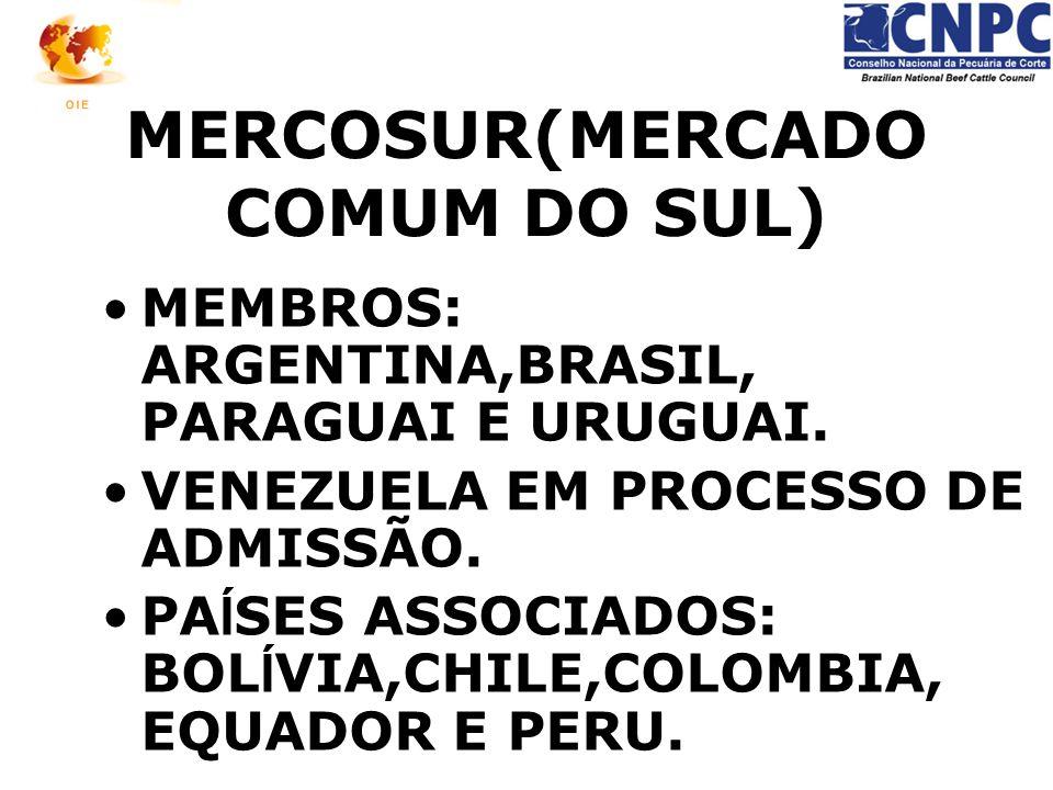 MERCOSUR(MERCADO COMUM DO SUL) MEMBROS: ARGENTINA,BRASIL, PARAGUAI E URUGUAI. VENEZUELA EM PROCESSO DE ADMISSÃO. PA Í SES ASSOCIADOS: BOL Í VIA,CHILE,