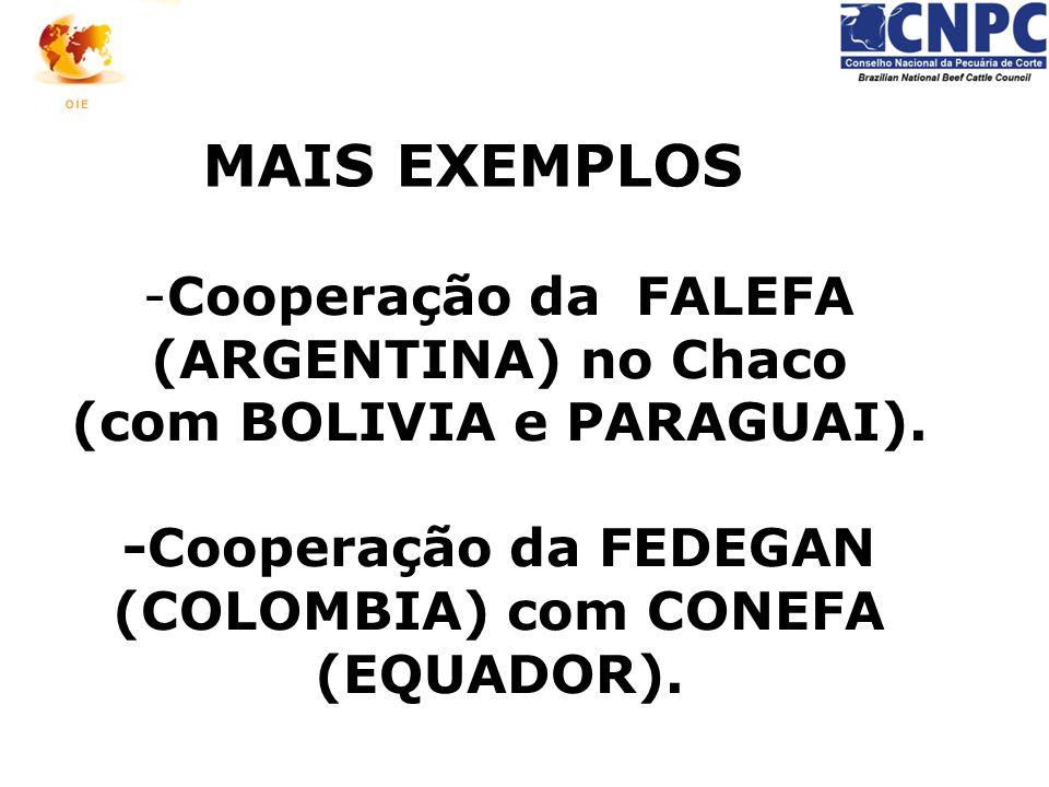 -Cooperação da FALEFA (ARGENTINA) no Chaco (com BOLIVIA e PARAGUAI). -Cooperação da FEDEGAN (COLOMBIA) com CONEFA (EQUADOR). MAIS EXEMPLOS