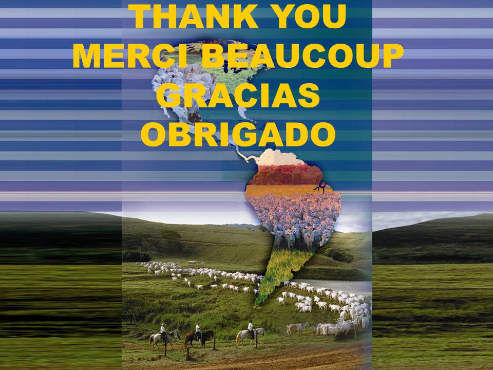 THANK YOU MERCI BEAUCOUP GRACIAS OBRIGADO