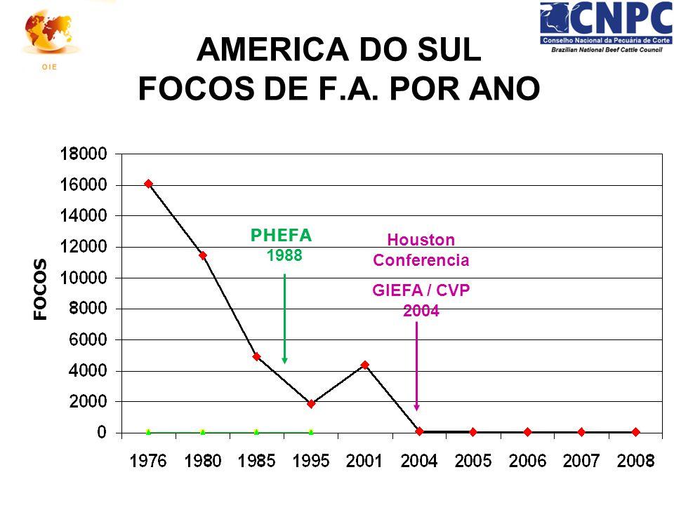 Houston Conferencia GIEFA / CVP 2004 AMERICA DO SUL FOCOS DE F.A. POR ANO PHEFA 1988 FOCOS