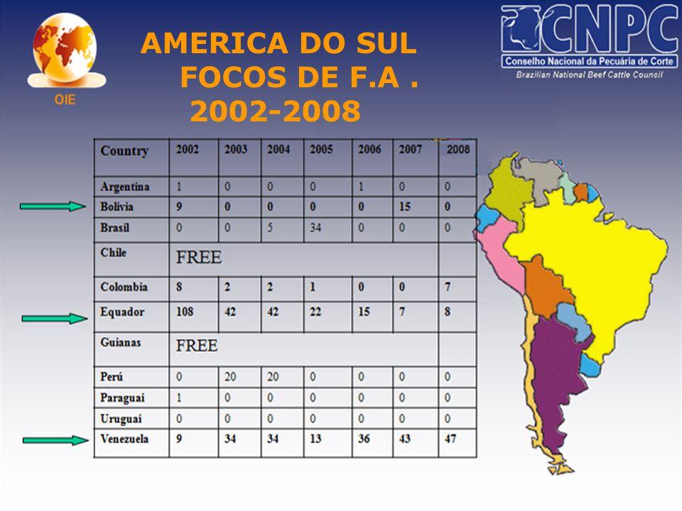 AMERICA DO SUL FOCOS DE F.A. 2002-2008