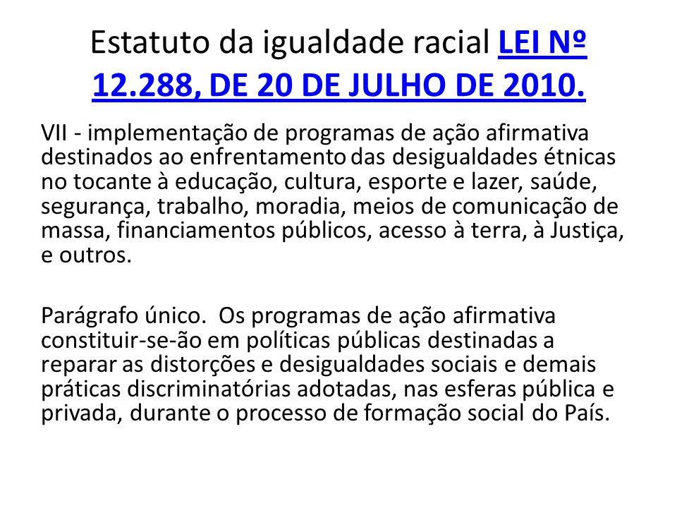 VII - implementação de programas de ação afirmativa destinados ao enfrentamento das desigualdades étnicas no tocante à educação, cultura, esporte e la