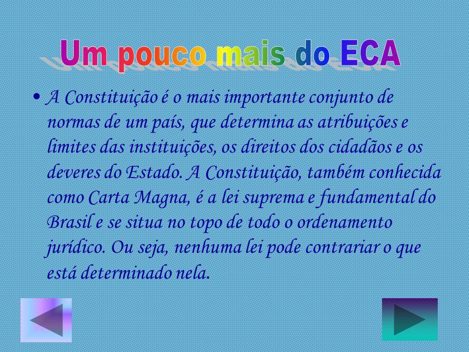A Constituição é o mais importante conjunto de normas de um país, que determina as atribuições e limites das instituições, os direitos dos cidadãos e