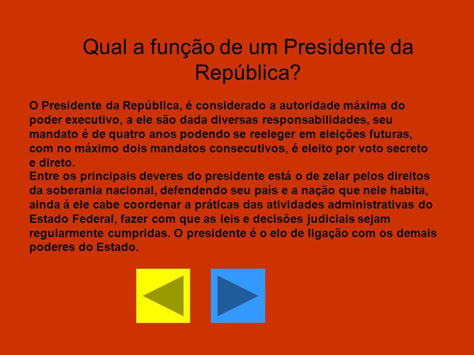 Qual a função de um Presidente da República? O Presidente da República, é considerado a autoridade máxima do poder executivo, a ele são dada diversas