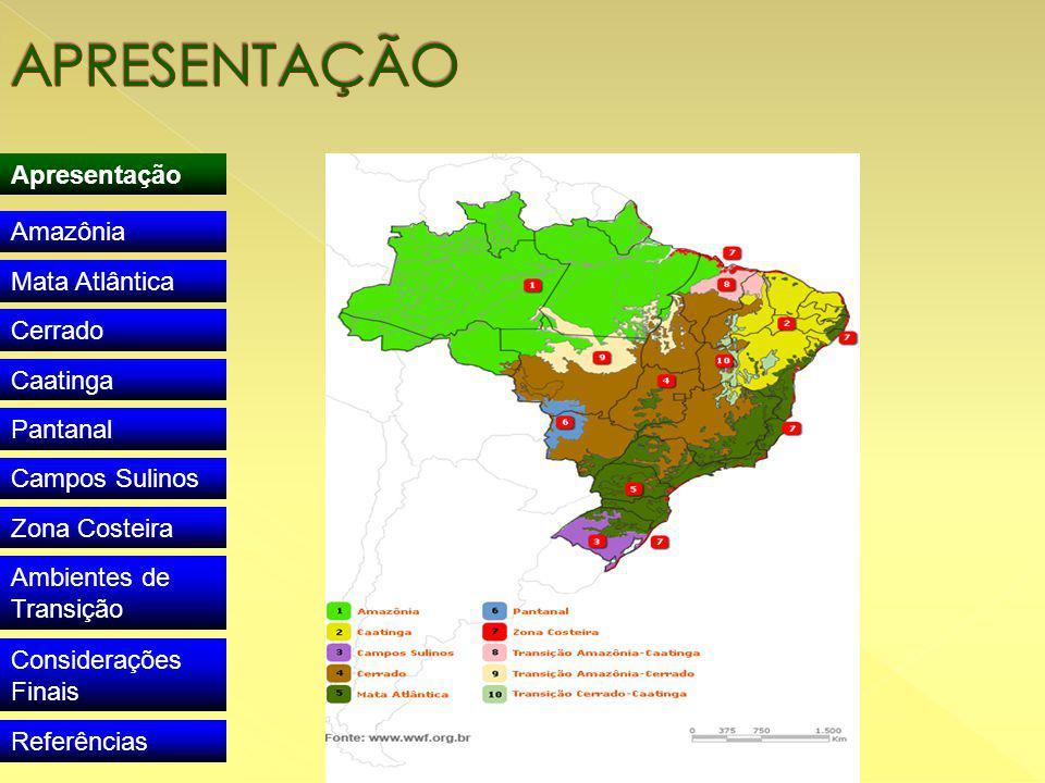 Apresentação Amazônia Mata Atlântica Cerrado Caatinga Pantanal Campos Sulinos Zona Costeira Ambientes de Transição Considerações Finais Referências
