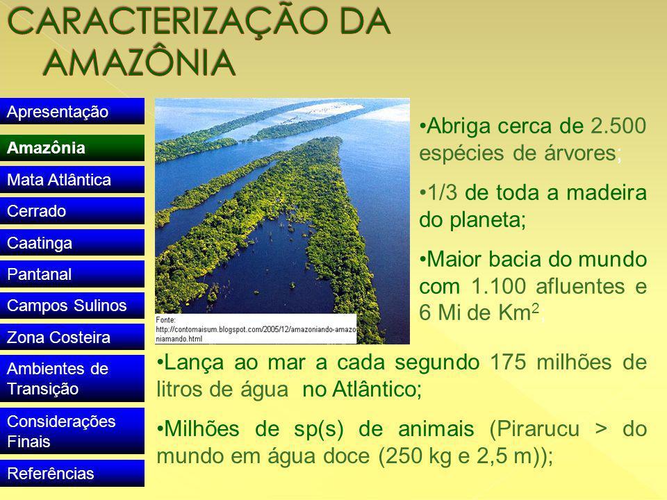 Apresentação Amazônia Mata Atlântica Cerrado Caatinga Pantanal Campos Sulinos Zona Costeira Ambientes de Transição Considerações Finais Referências Abriga cerca de 2.500 espécies de árvores; 1/3 de toda a madeira do planeta; Maior bacia do mundo com 1.100 afluentes e 6 Mi de Km 2 ; Lança ao mar a cada segundo 175 milhões de litros de água no Atlântico; Milhões de sp(s) de animais (Pirarucu > do mundo em água doce (250 kg e 2,5 m));