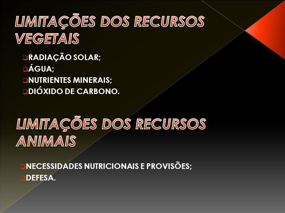  RADIAÇÃO SOLAR;  ÁGUA;  NUTRIENTES MINERAIS;  DIÓXIDO DE CARBONO.