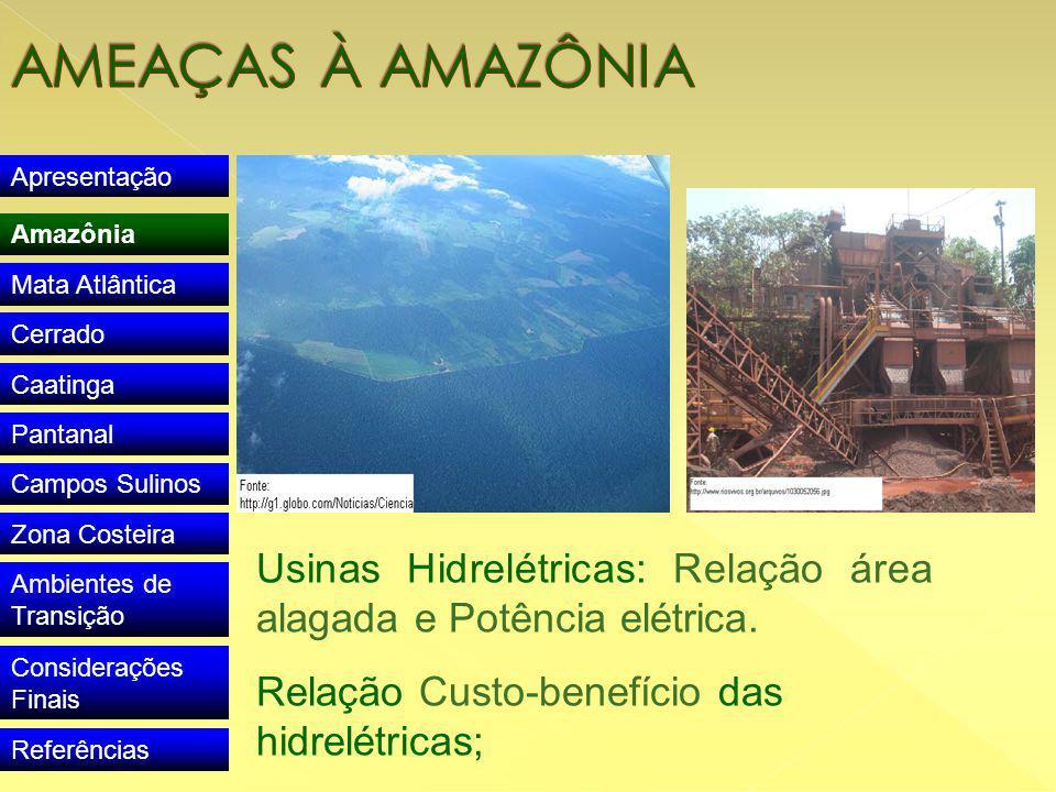 Apresentação Amazônia Mata Atlântica Cerrado Caatinga Pantanal Campos Sulinos Zona Costeira Ambientes de Transição Considerações Finais Referências Usinas Hidrelétricas: Relação área alagada e Potência elétrica.
