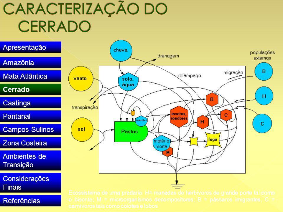 Apresentação Amazônia Mata Atlântica Cerrado Caatinga Pantanal Campos Sulinos Zona Costeira Ambientes de Transição Considerações Finais Referências Ecossistema de uma pradaria.