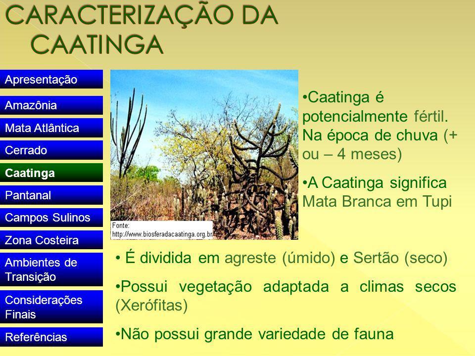 Apresentação Amazônia Mata Atlântica Cerrado Caatinga Pantanal Campos Sulinos Zona Costeira Ambientes de Transição Considerações Finais Referências Caatinga é potencialmente fértil.