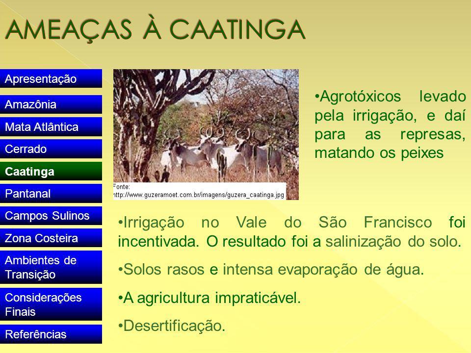 Apresentação Amazônia Mata Atlântica Cerrado Caatinga Pantanal Campos Sulinos Zona Costeira Ambientes de Transição Considerações Finais Referências Irrigação no Vale do São Francisco foi incentivada.