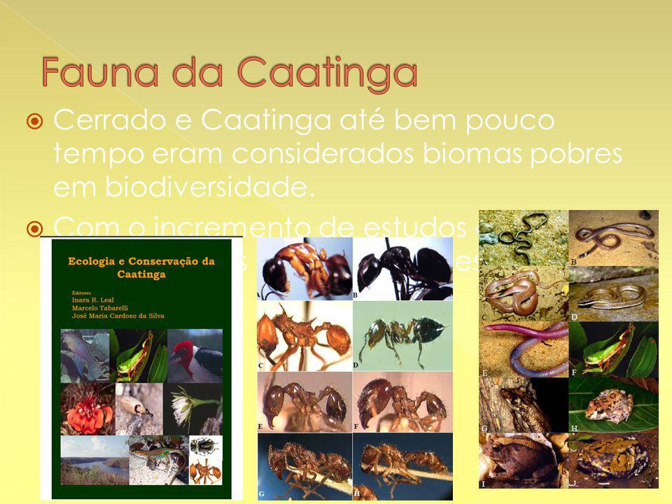  Cerrado e Caatinga até bem pouco tempo eram considerados biomas pobres em biodiversidade.