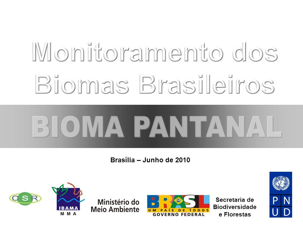 Brasília – Junho de 2010 Secretaria de Biodiversidade e Florestas