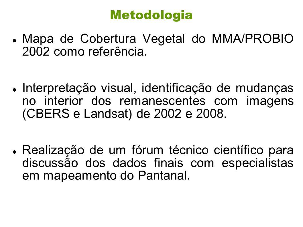 Metodologia Mapa de Cobertura Vegetal do MMA/PROBIO 2002 como referência. Interpretação visual, identificação de mudanças no interior dos remanescente