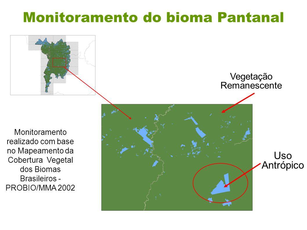 Monitoramento do bioma Pantanal Monitoramento realizado com base no Mapeamento da Cobertura Vegetal dos Biomas Brasileiros - PROBIO/MMA 2002 Vegetação