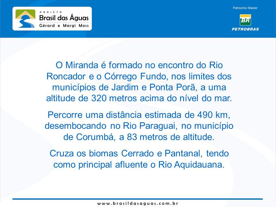 O Miranda é formado no encontro do Rio Roncador e o Córrego Fundo, nos limites dos municípios de Jardim e Ponta Porã, a uma altitude de 320 metros aci
