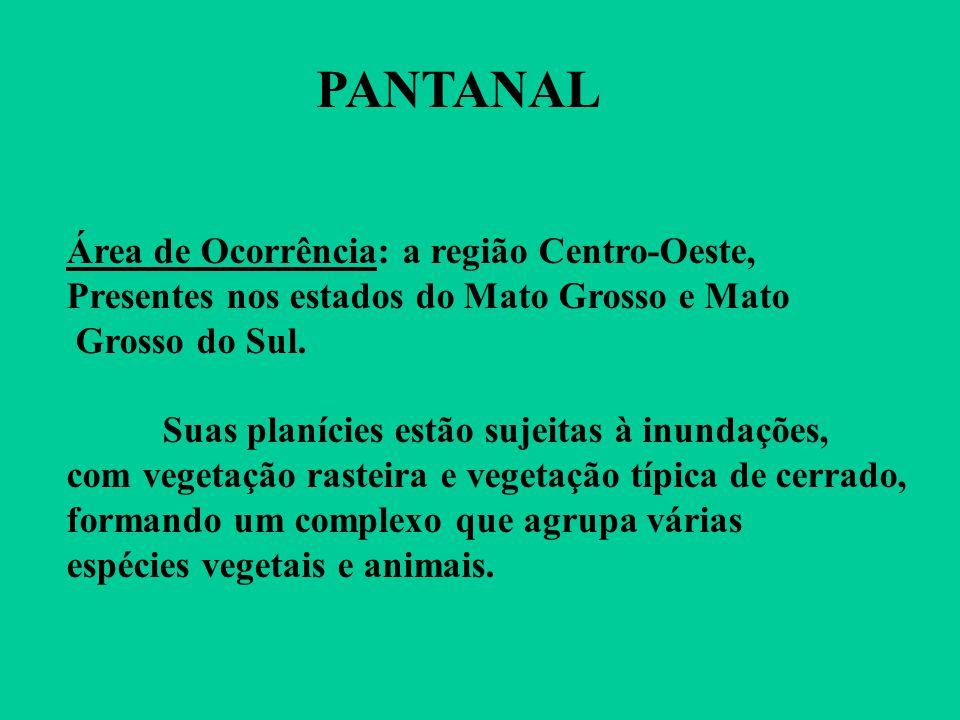 PANTANAL Área de Ocorrência: a região Centro-Oeste, Presentes nos estados do Mato Grosso e Mato Grosso do Sul.