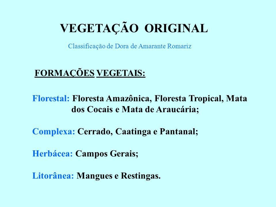 VEGETAÇÃO ORIGINAL Classificação de Dora de Amarante Romariz FORMAÇÕES VEGETAIS: Florestal: Floresta Amazônica, Floresta Tropical, Mata dos Cocais e Mata de Araucária; Complexa: Cerrado, Caatinga e Pantanal; Herbácea: Campos Gerais; Litorânea: Mangues e Restingas.