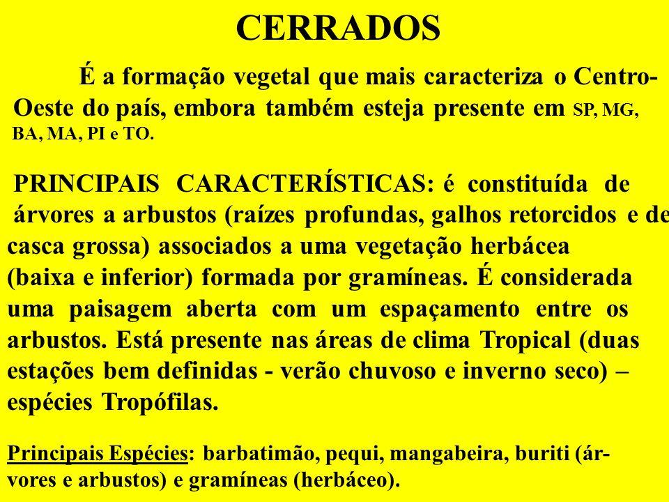 CERRADOS É a formação vegetal que mais caracteriza o Centro- Oeste do país, embora também esteja presente em SP, MG, BA, MA, PI e TO.