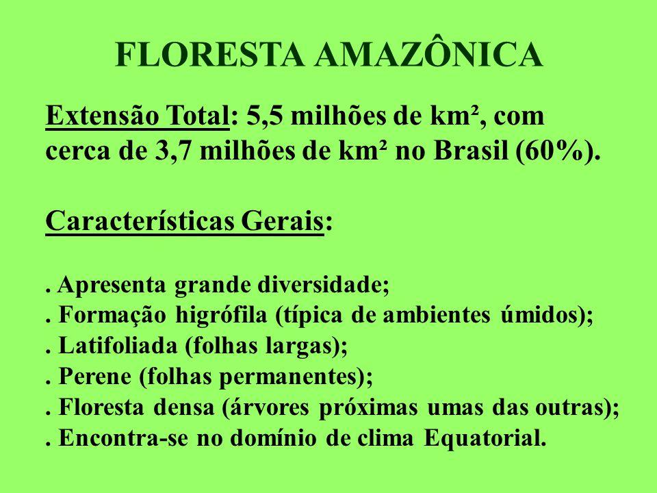 FLORESTA AMAZÔNICA Extensão Total: 5,5 milhões de km², com cerca de 3,7 milhões de km² no Brasil (60%).