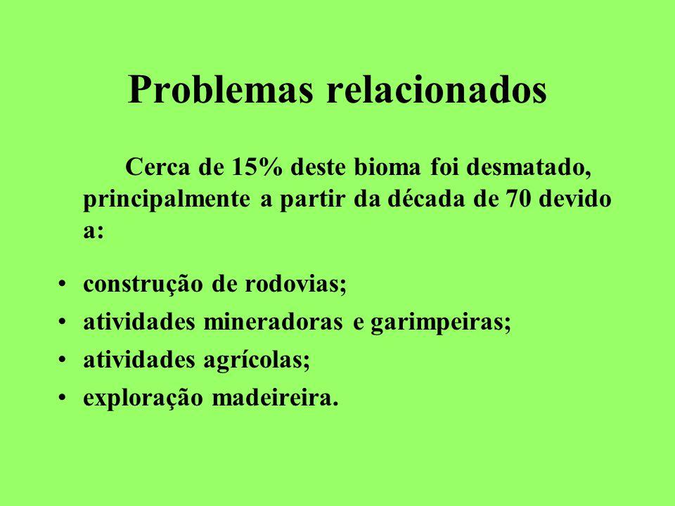 Problemas relacionados Cerca de 15% deste bioma foi desmatado, principalmente a partir da década de 70 devido a: construção de rodovias; atividades mineradoras e garimpeiras; atividades agrícolas; exploração madeireira.