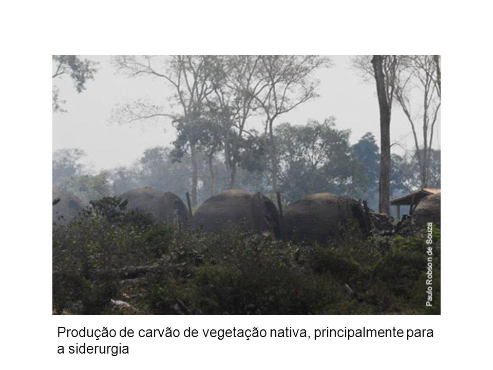 Produção de carvão de vegetação nativa, principalmente para a siderurgia