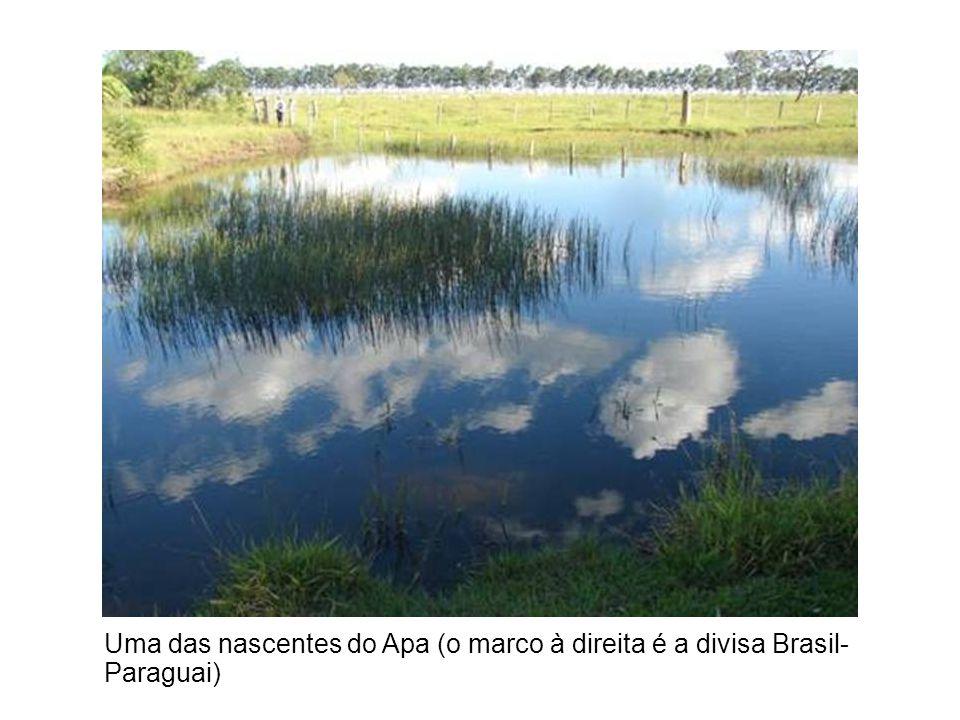 Uma das nascentes do Apa (o marco à direita é a divisa Brasil- Paraguai)