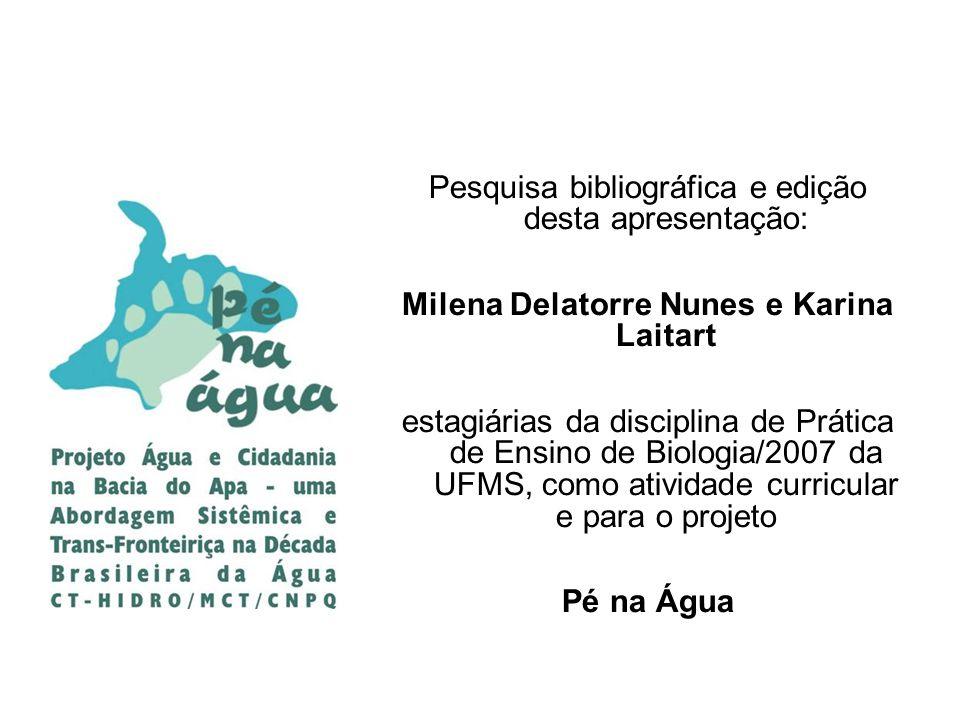 Pesquisa bibliográfica e edição desta apresentação: Milena Delatorre Nunes e Karina Laitart estagiárias da disciplina de Prática de Ensino de Biologia
