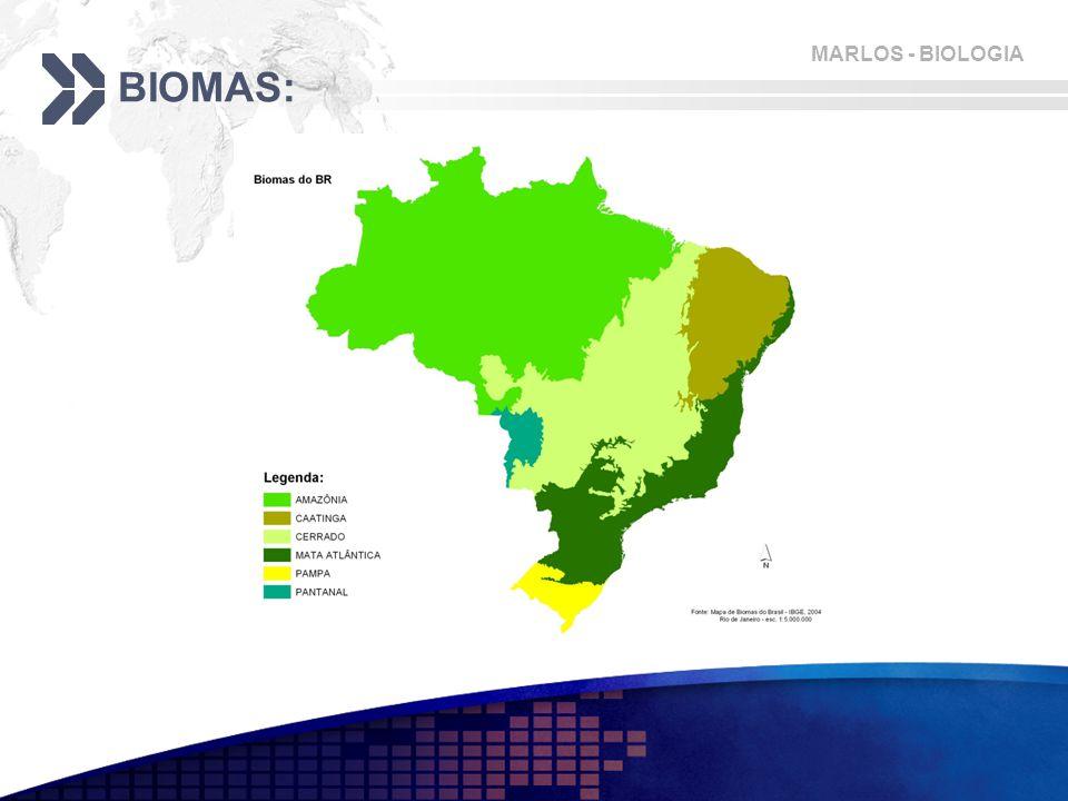 MARLOS - BIOLOGIA BIOMAS: