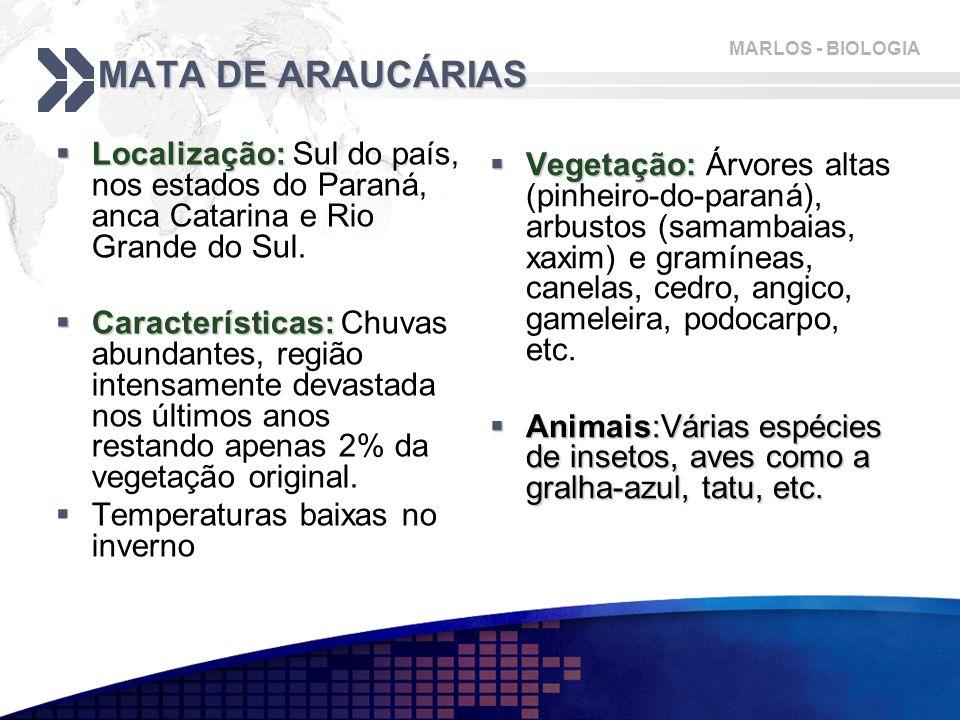 MARLOS - BIOLOGIA MATA DE ARAUCÁRIAS  Localização:  Localização: Sul do país, nos estados do Paraná, anca Catarina e Rio Grande do Sul.  Caracterís
