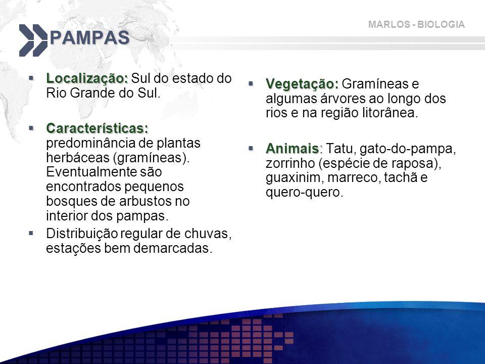 MARLOS - BIOLOGIA PAMPAS  Localização:  Localização: Sul do estado do Rio Grande do Sul.  Características:  Características: predominância de plan
